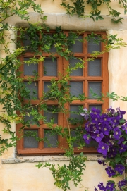 Flowered Window - Carmel Mission