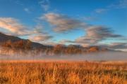 Amber Field, Blue Sky