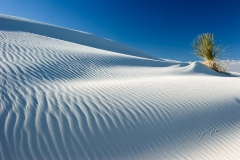 White Sands Ripples