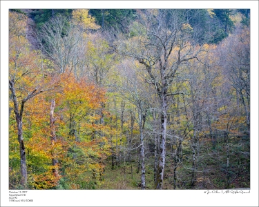 Colson_171013_B1021585-Edit-FrameShop