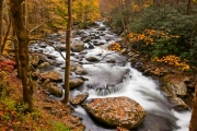 Tremont Rapids #2