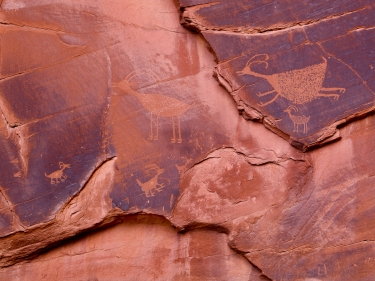 Animal Petroglyphs - Monument Valley