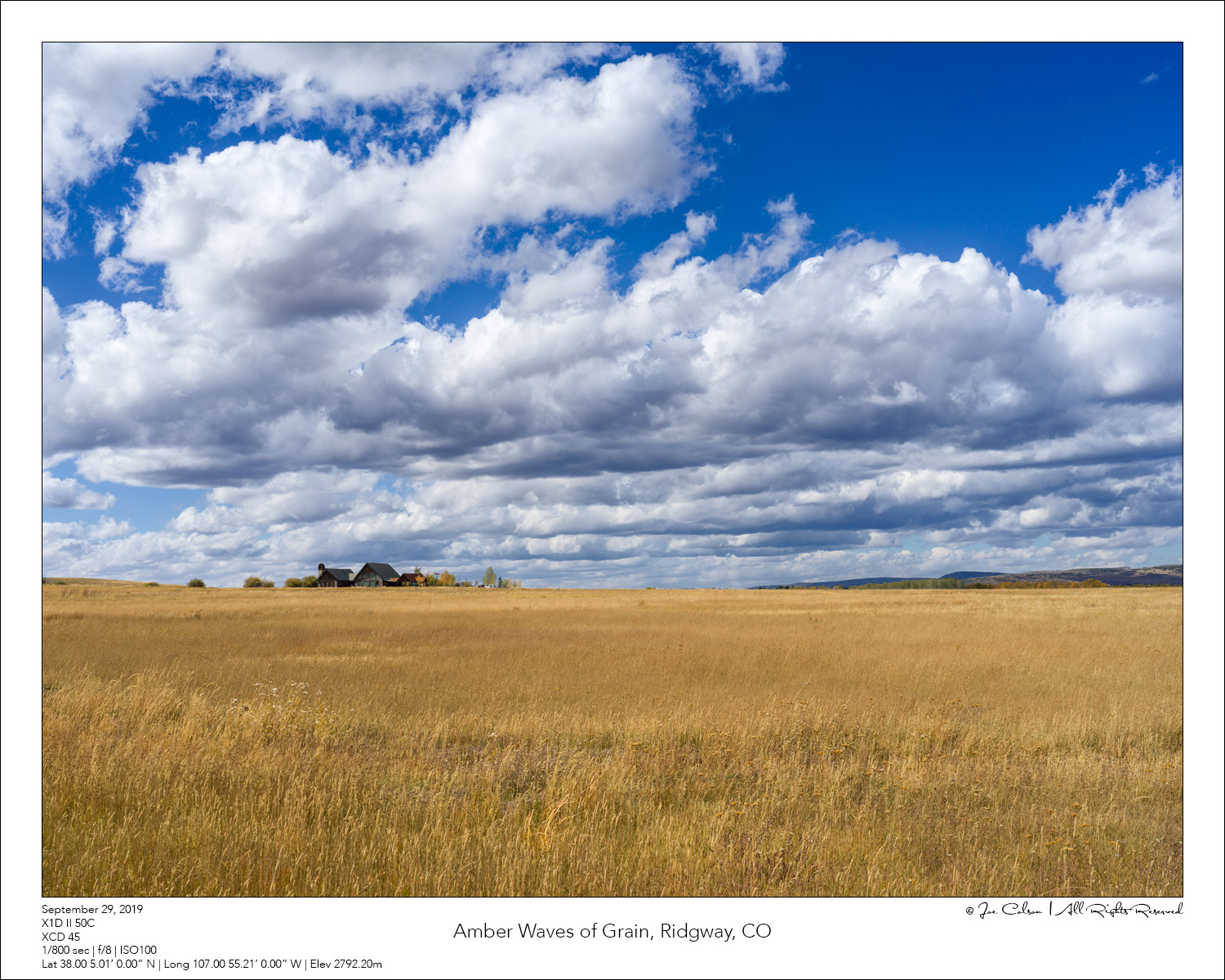 Amber Waves of Grain, Ridgway, CO