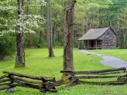 Carter Shields Cabin - Cades Cove