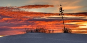 Red Sky at White Sands